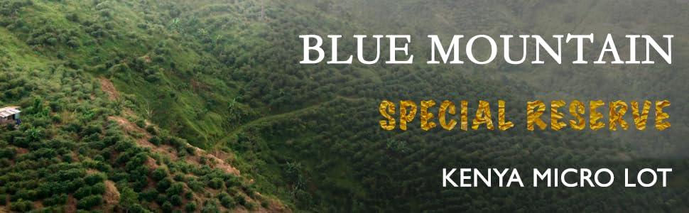 Raw Unroasted Green Coffee Beans Single Origin Specialty Arabica Jamaica Blue Mountain Kenya Organic