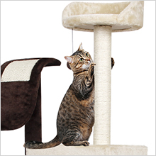cat play towers cat tree and towers cat tree furniture cat tower for 2 cats cat tower scratch