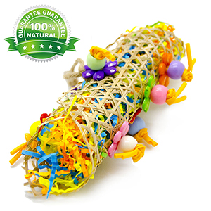 parrot toys for small birds