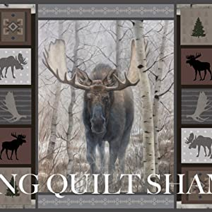 king quilt shams design