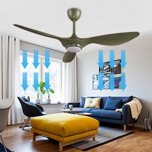 summer ceiling fan