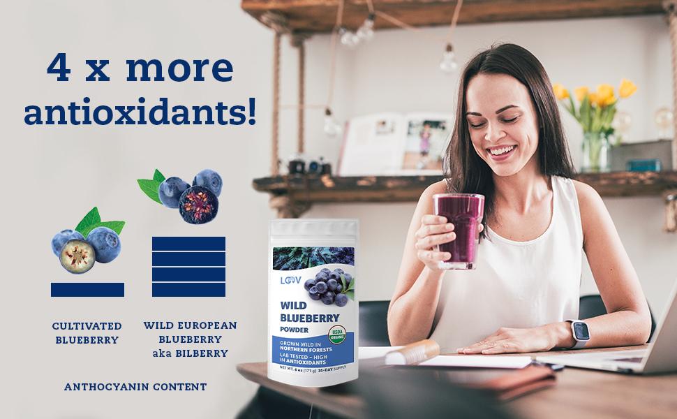 LOOV freeze-dried wild blueberry powder is rich in antioxidants