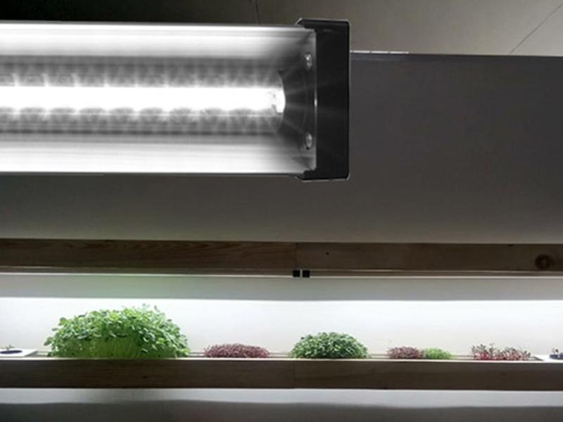 LED Grow Light, Indoor Garden, Starter plants, Hydroponics, Aquaponics Full Spectrum