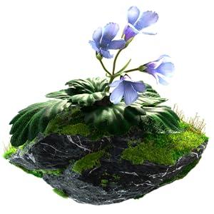 RARE RESURRECTION FLOWER ORPHEUS FLOWER ICE AGE BOTANICAL