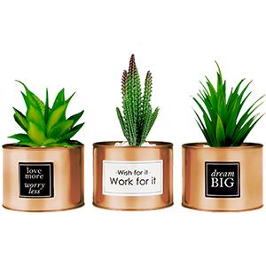 female bedroom decor aesthetic room decor office supplies for women desk decor house plants