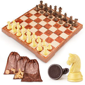 2 in 1 Chess & Checkers Game Set
