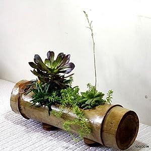 bamboo hanging planter