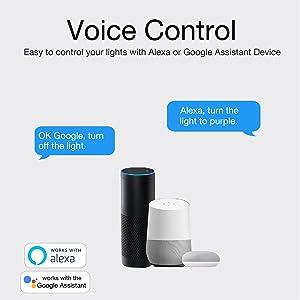 voice light bulbs