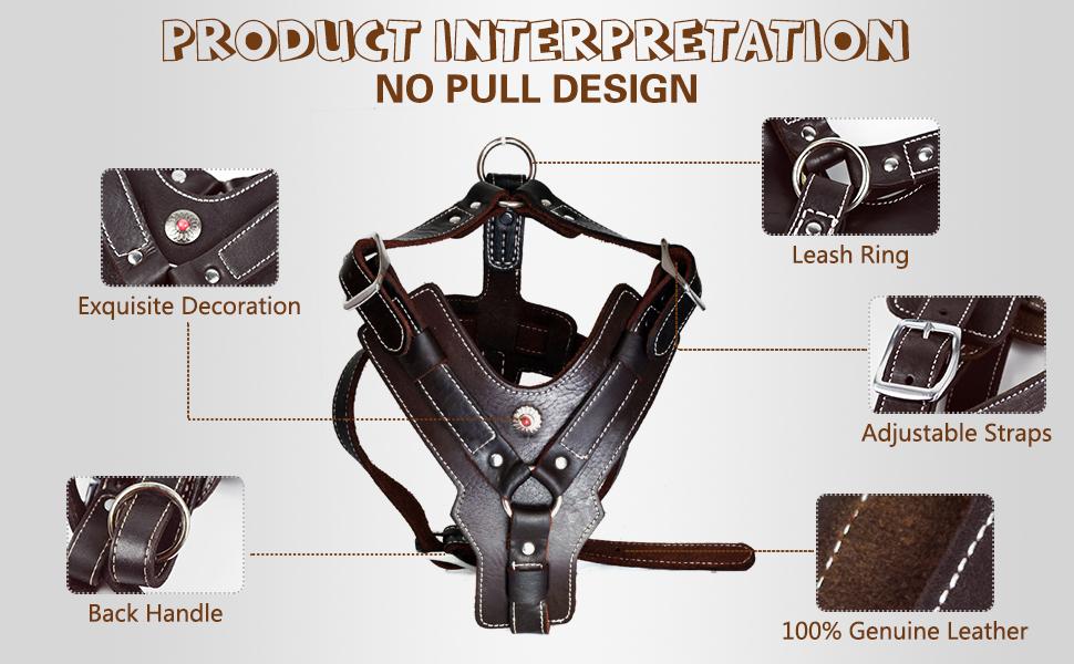 product interpretation