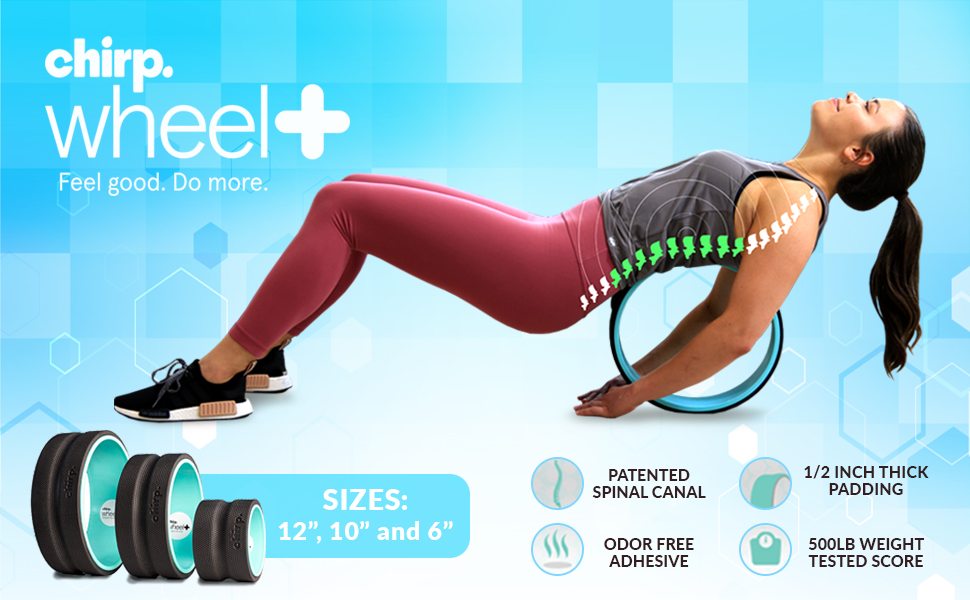 """Amazon.com : Chirp Plexus 12"""" Gentle Wheel+ for Back Pain, Stretches and Strengthens Core Muscles, Relieves Strain to Muscles and Ligaments, Helps Prevent Herniated/Bulging Discs, Arthritis, and Osteoporosis. : Sports & Outdoors"""