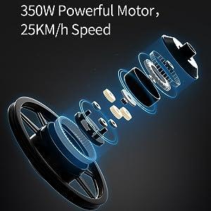 Motore da 350 W.