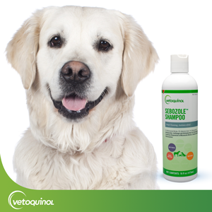 Effective Yet Gentle Pet Shampoo for Dogs, Cats and Horses