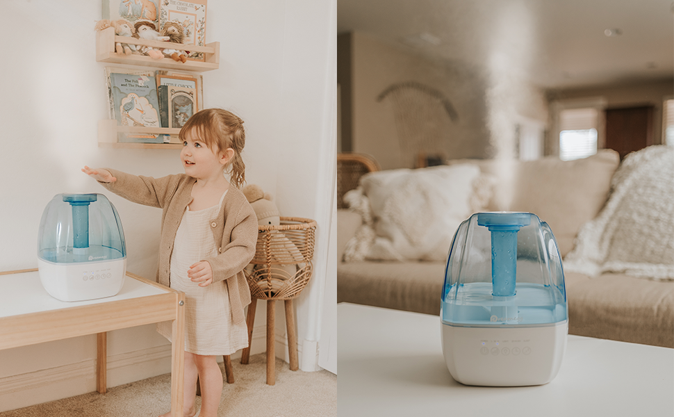 cool mist humidifier for living room