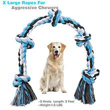 dog ropes