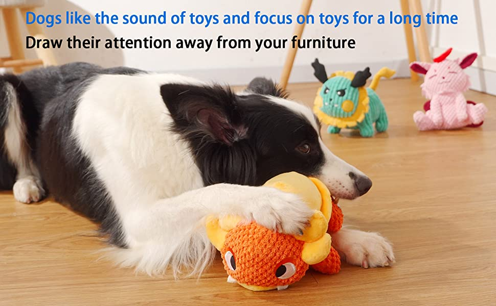 DOG LIKE THE SQUEAKY TOYS