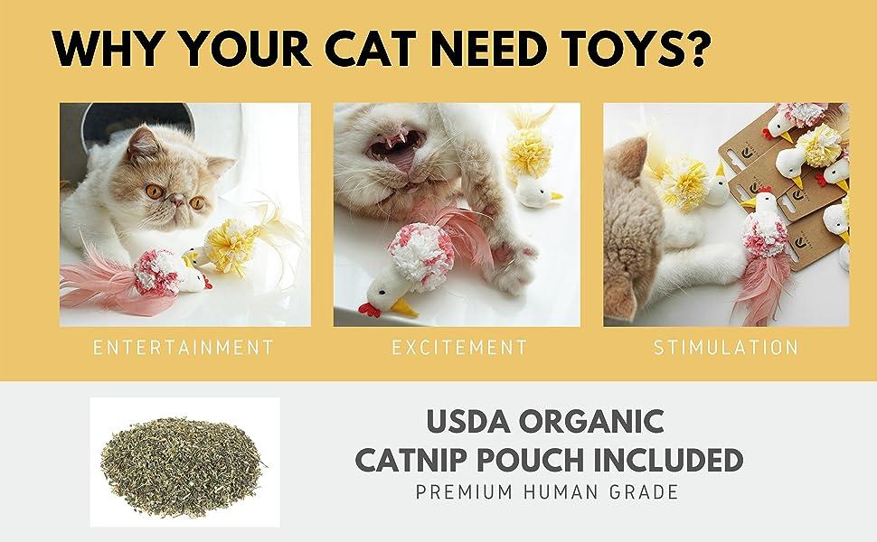 usda catnip cat toy, human grade catnip, cat stimulation, fun cat toy, cute cat toy