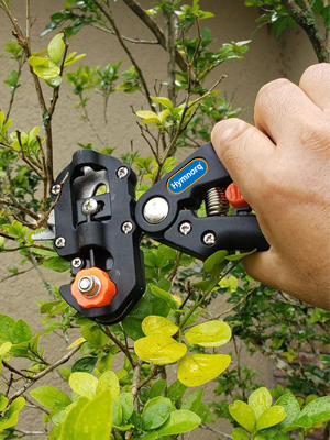 Hymnorq grafting tool