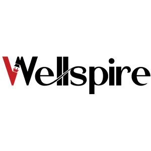 logo wellspire