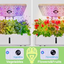 indoor vegetable garden system