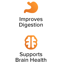 Improves Digestion. Supports Brain Health.