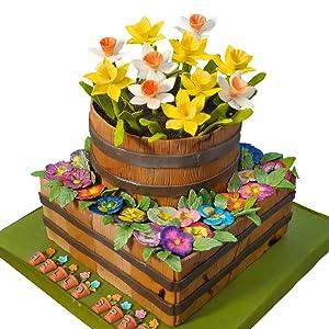 Daffodils Cake
