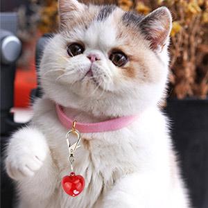 loud cat collar bells