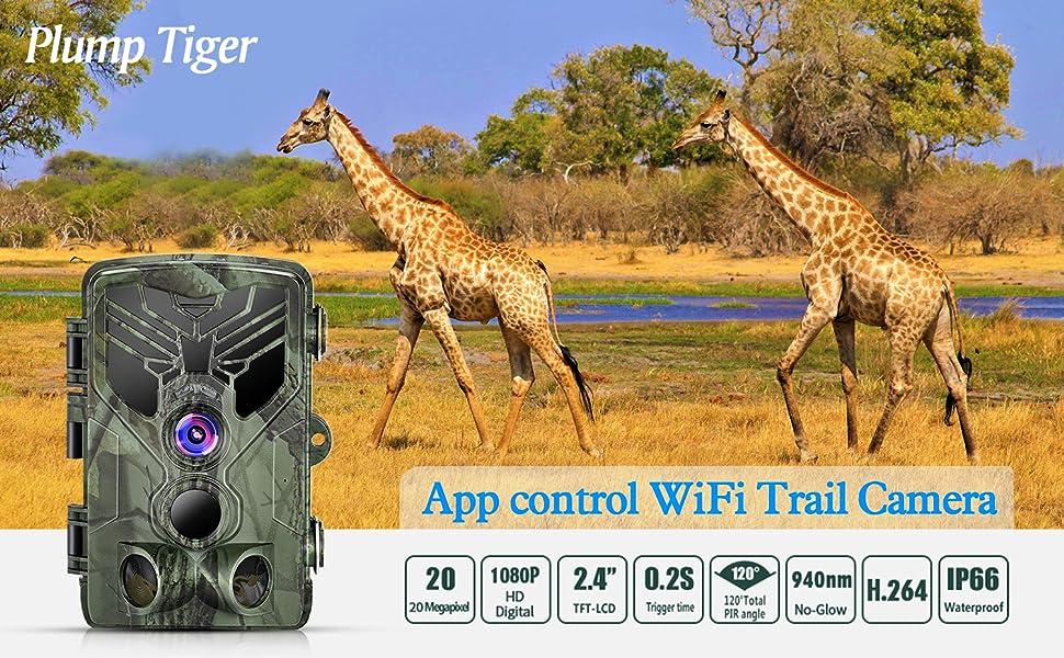 App control wifi trail camera