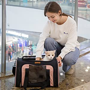 pet carrier for cat