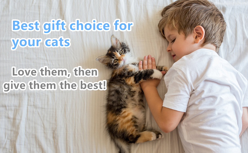 Best gift choice for your cats