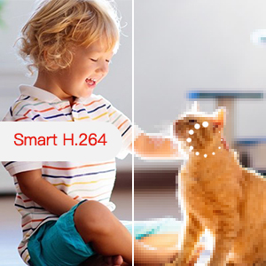 Pet Camera 1080P Wireless Security Camera, WIFI Indoor IP Cam with Pan/Tilt/Zoom, Sound Detection
