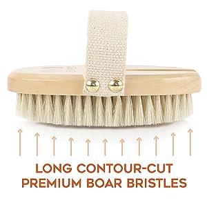 natural boar bristles cotton strap lotus wood premium dry body brush