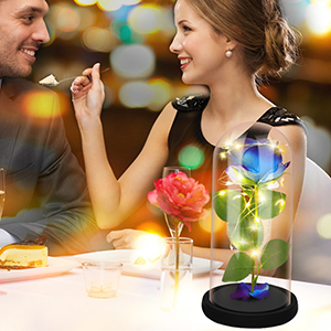 Beauty and The Beast Rose Enchanted Flower with LED Light in Glass Dome for  Mother's Day Birthday