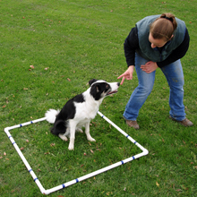 Dog Agility Equipment Pause Table Training Box