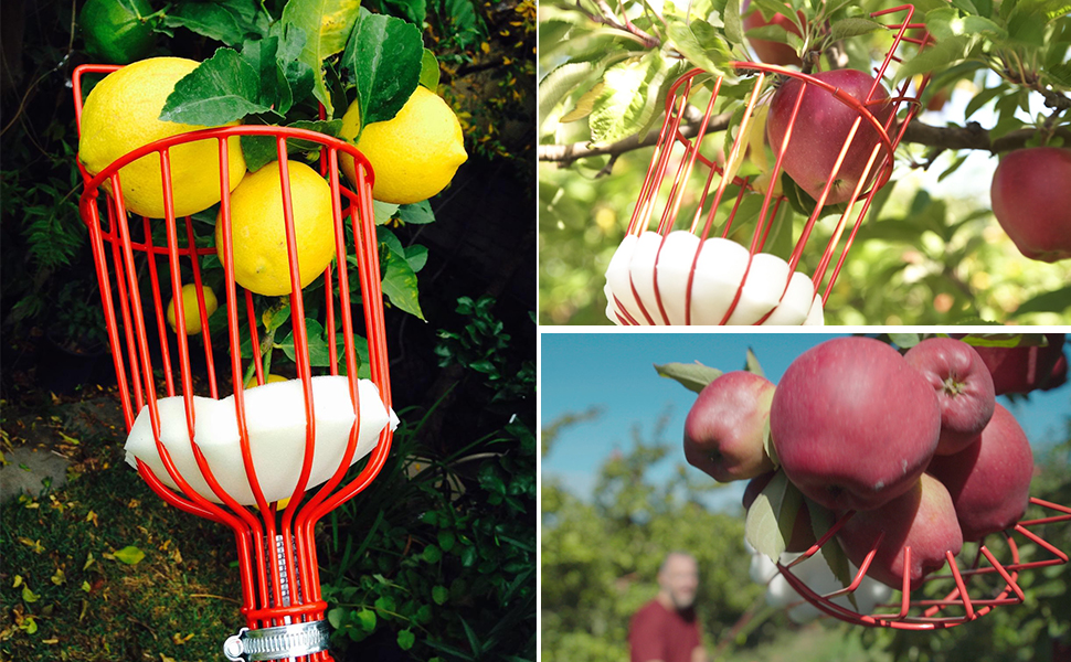 Ohuhu Fruit Picker with Aluminum Telescoping Pole, Fruit Picking Equipment for Getting Fruits