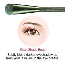short shade brush