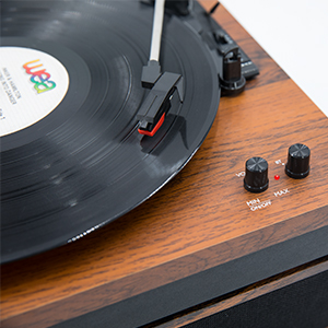 Belt Drive Stereo Turntable