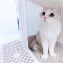 Furrytail Glow House Cat Litter Box