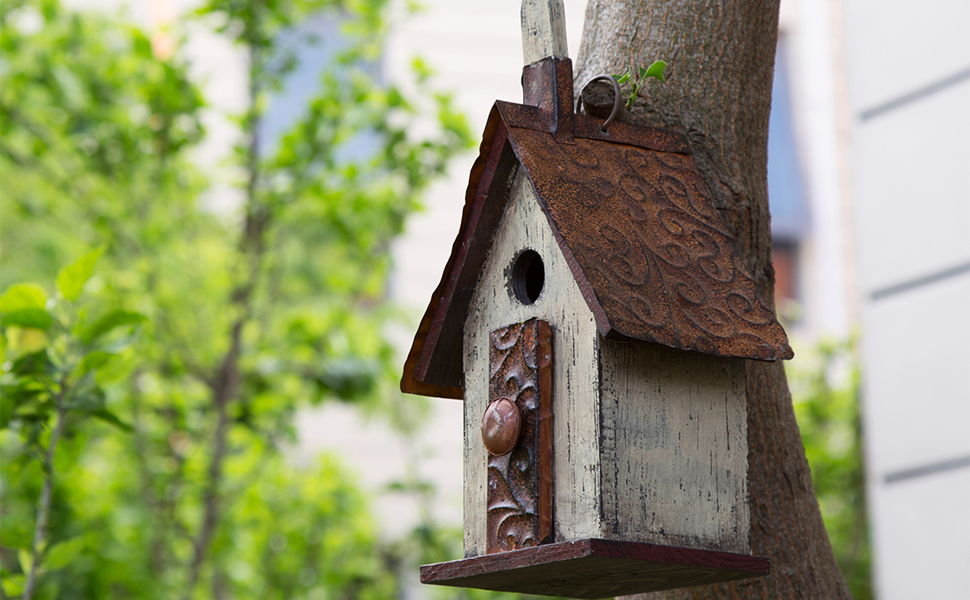 birdhouse feeders squirrel seed decorative window metal outdoor wood finch hanging stand rustic