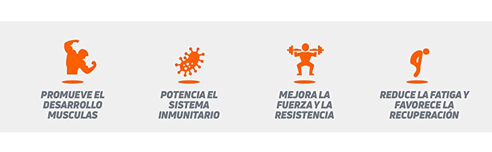HSN Péptidos de Glutamina Máxima Biodisponibilidad y Mayor Asimilación, Recuperación Muscular Óptima, Salud Intestinal | Vegano, Sin Lactosa, Sin ...