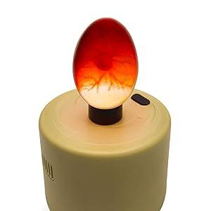 candler, egg candling, brooding, titan, titan incubators