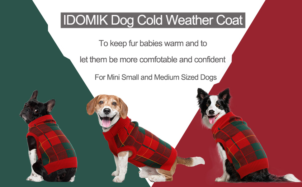 dog winter coat star