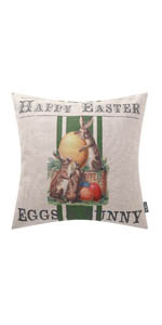 Trendin Happy Easter Bunny Pillow Cover