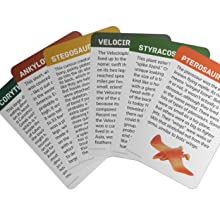 6 Learning Cards
