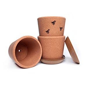 Three natural cork plant pots with drainage hole bees on one pot
