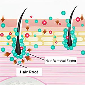 Hair Inhibitor