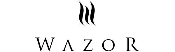 Wazor Ionic Hair Dryer