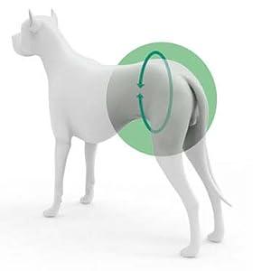 Banda de Ayuda - XS: Amazon.es: Productos para mascotas