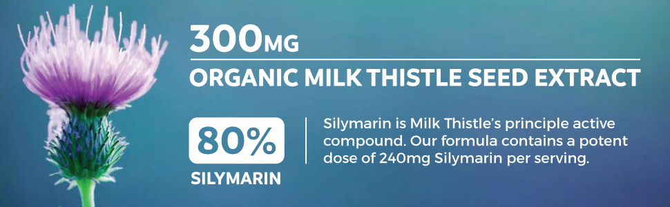 Organic Milk Thistle Seed Extract with 80% Silymarin