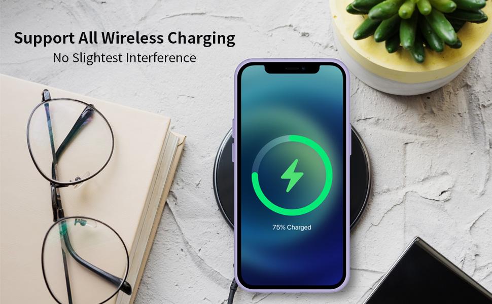 iphone pro max case 12
