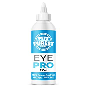 dog cat horse rabbit eye drops itching infection fungal bacteria yeast clean cleanse remove dirt
